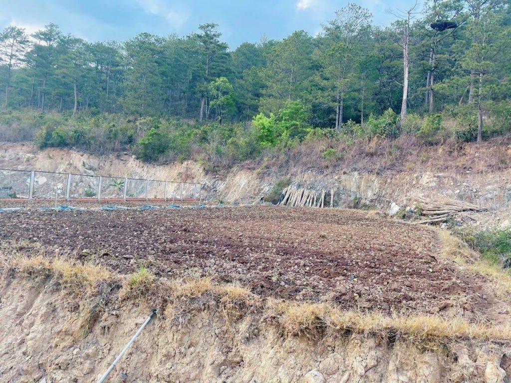Bán đất ở Bồng Lai