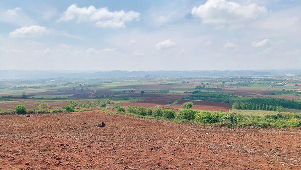 Cần bán đất ở Tân Hội