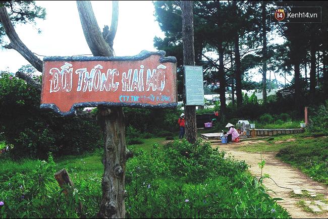 Địa điểm du lịch mới ở Đà Lạt