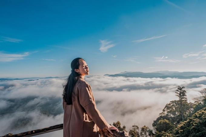 Cầu gỗ săn mây Đà Lạt