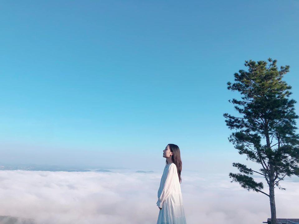 Tour săn mây Đà Lạt giá rẻ